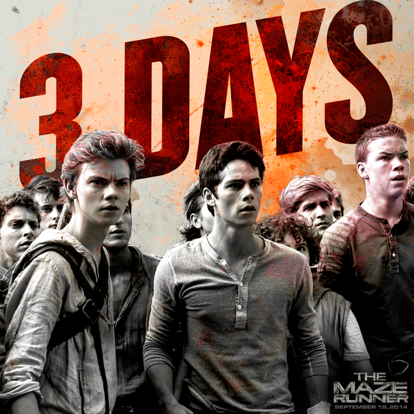 THE MAZE RUNNER Trailer To Premiere During Teen Wolf